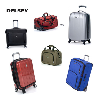 Delsey luggage and logo