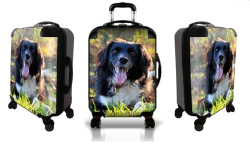 Personalized luggage with happy dog