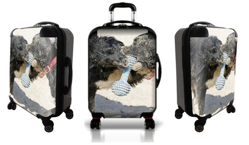 Personalized luggage with two dogs playing